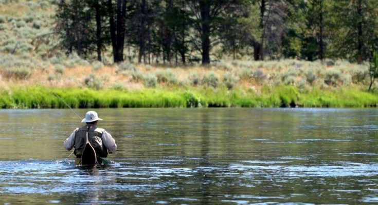 10 Fantastic Fly-Fishing Spots in Wyoming