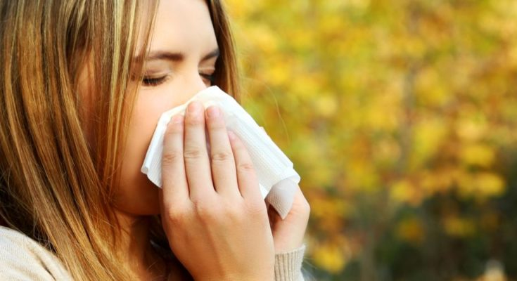 How to Prepare for Allergy Season