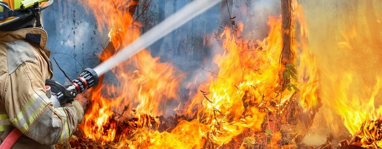 How Wildfires Affect the Water Supply