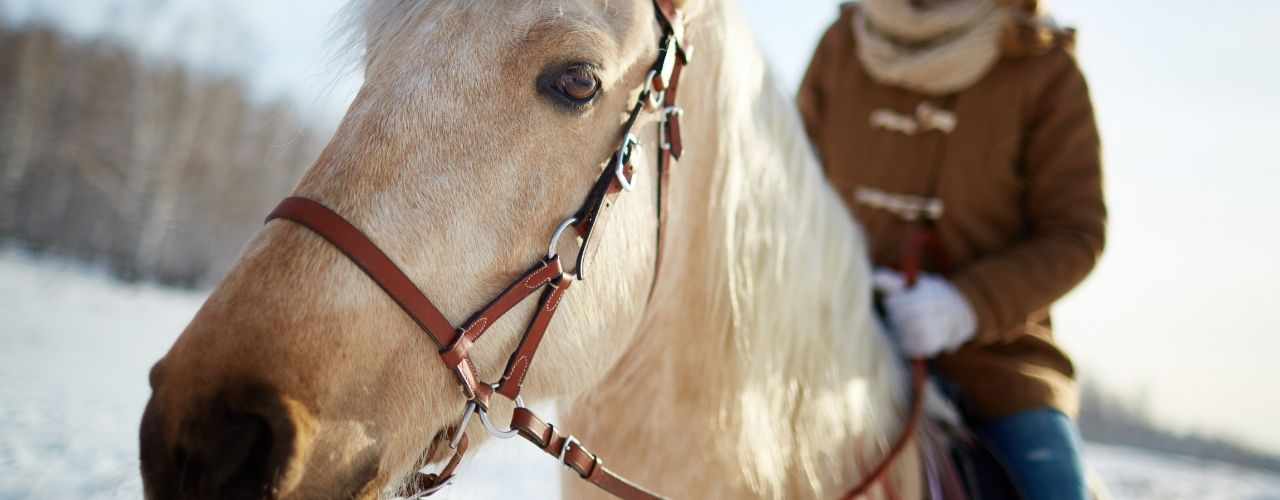 What To Wear for Horseback Riding in the Winter