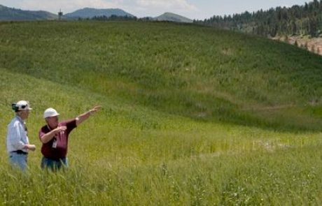 Simplot recognized for efforts made with fish habitat project