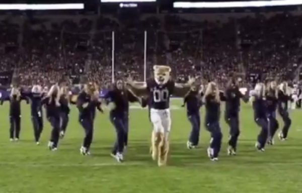 Cosmo Goes Viral!  BYU Mascot wins the internet with dance moves.