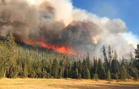 Lincoln County fire ban lifted