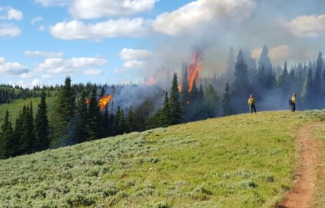 BLM to Conduct Prescribed Fires in Sublette and Lincoln Counties