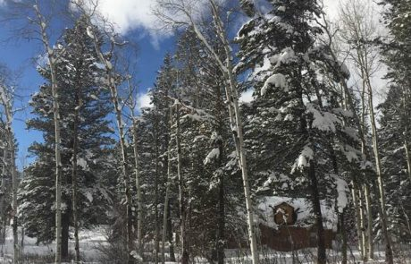 Weekend Snow Fall Totals